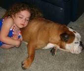 animale de companie si copii