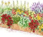 ghicitori despre flori