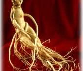 plante afrodisiace naturale