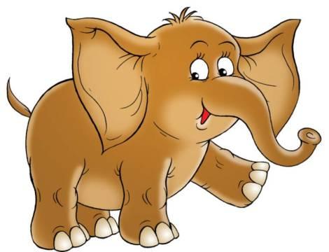 elefantul cici