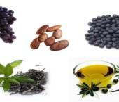 surse de polifenoli antioxidanti